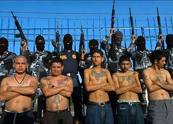 mexican-cartels.jpg