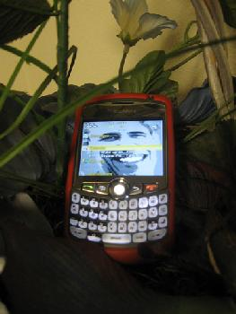 obama-blackberry.jpg