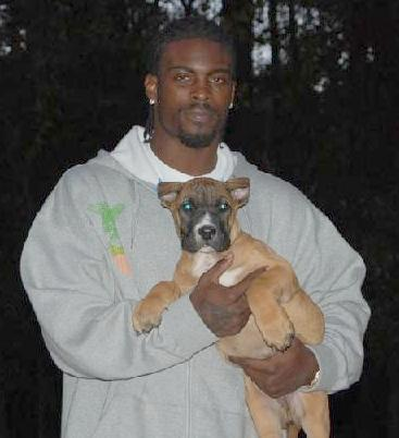 michael_vick2007-with-dog-med-lrg