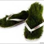 shoes-grass-flip-flop