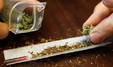 A joint about to be rolled