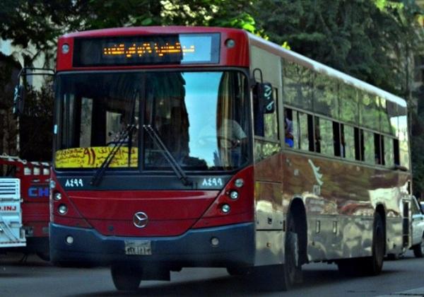 egyptian bus