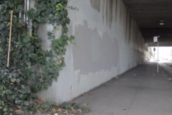 Mural, Oakland artist shot dead