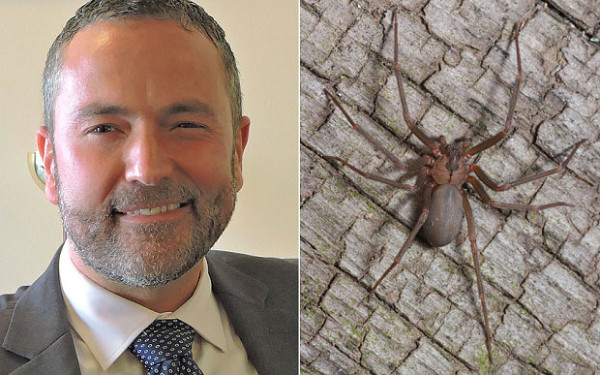 Jonathan Hogg says he was bitten by recluse spider (R)
