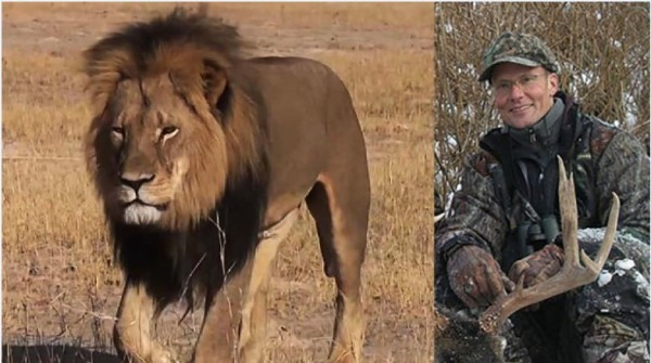 cecil-the-lion and dentist