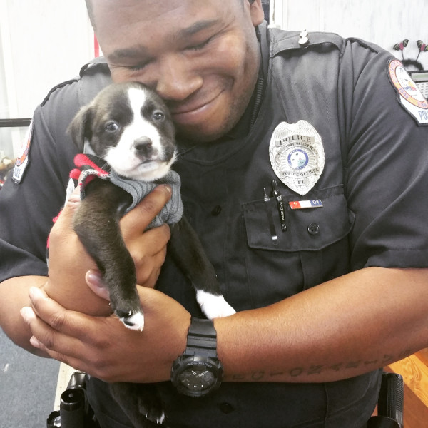 cop rescues dog