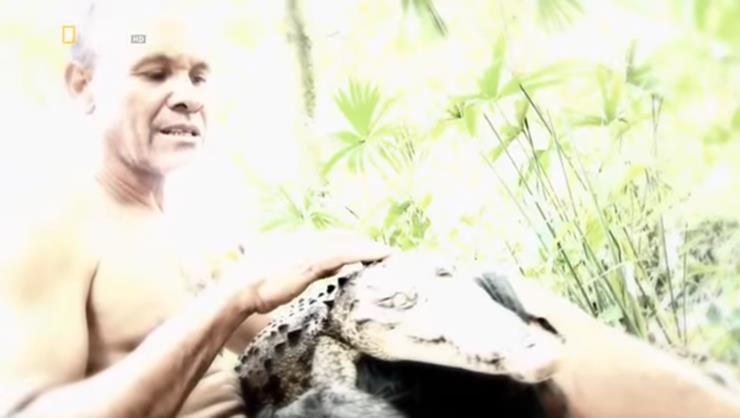 05-pocho-crocodile