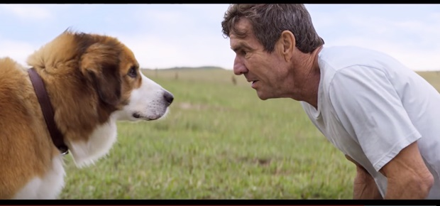 Dennis Quaid in 'A Dog's Purpose'